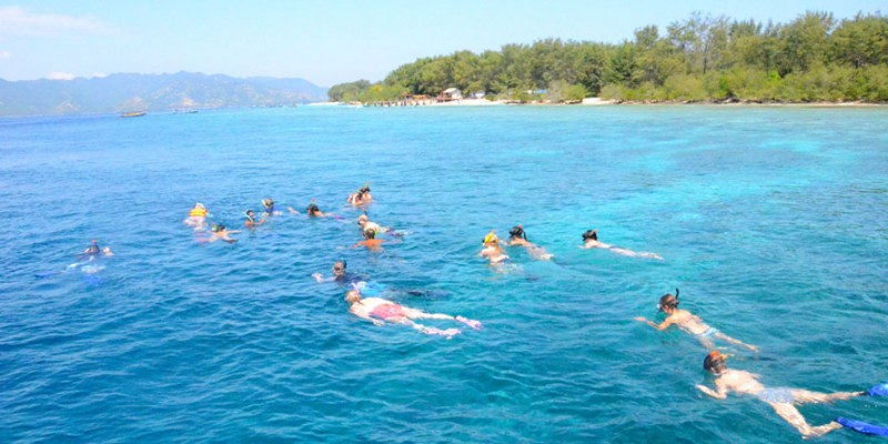Snorkeling at Gili Trawangan